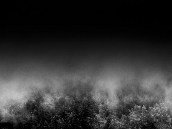 Fog, série de photographies tout en nuance de gris